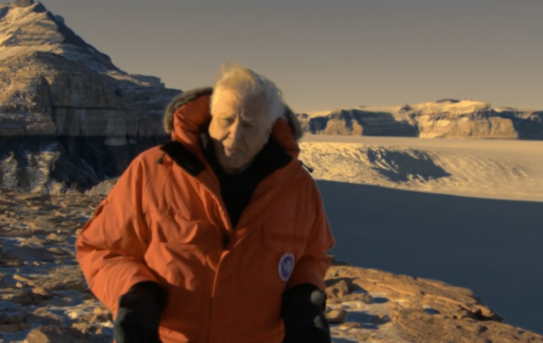 Frozen Planet – Thin Ice – Clip